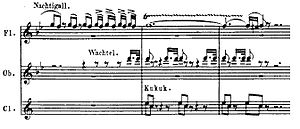 Symphony No. 6 (Beethoven) - Cadenza of bird calls in second movement; bird species are noted in German. Click to enlarge.