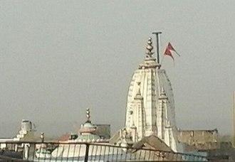 Manasa, Madhya Pradesh - Top view of the Badrivishal Mandir
