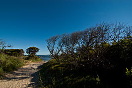 Bakers Beach Narawntapu National Park 1.jpg