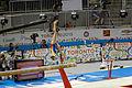 Balance 1 2015 Pan Am Games.jpg