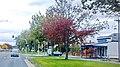 Ballarat East VIC 3350, Vitory st- Uc - panoramio.jpg