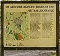 Balloërveld, natuurgebied in Drenthe 40.jpg