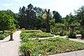 Bamberg Botanischer Garten 2015 (2).JPG