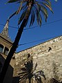 Barcelona Cathedral with palm tree (1071853384).jpg