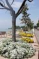 Bardolino-lake promenade-2.JPG