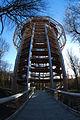 Baumwipfelpfad Naturerbe-Zentrum 11-2013 01.jpg