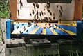 Bees at the hive entrance.JPG