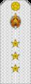 Belarus MIA—11 Senior Ensign rank insignia (White).png