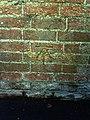 Benchmark on wall of footpath through Abingdon School - geograph.org.uk - 2093772.jpg
