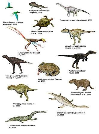 2008 in paleontology - Important finds in 2008