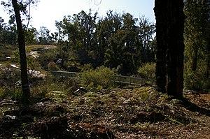 Bibbulmun Track - Bibbulmun track where it crosses the upper reaches of the Canning River