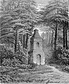 Biełaja, Hola. Белая, Голя (1883).jpg