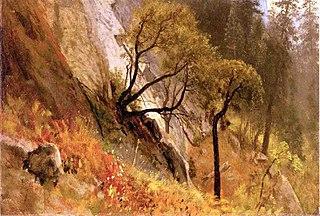 Landscape Study, Yosemite, California