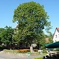 Biertische in Huppendorf - panoramio.jpg