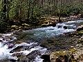 Big-creek-gsmnp1.jpg