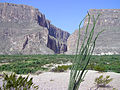 Big Bend National Park PB112566.jpg