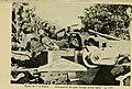 Birds and the war (1919) (14753013494).jpg