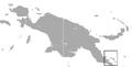 Black Dorcopsis area.png