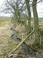 Blacklaw Burn - geograph.org.uk - 1757861.jpg
