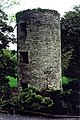 Blarney Castle Grounds - Adjacent tower - geograph.org.uk - 1605563.jpg