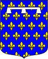 Blason d'Orléans Louis 1er.jpg