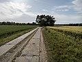 Bodden Landscape, Ribnitz-Damgarten (LRM 20200529 182123-hdr).jpg