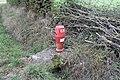 Bouche incendie route Merlières St Cyr Menthon 3.jpg