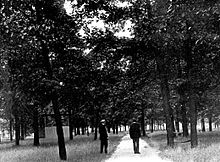 First known photo of campus in 1910