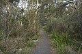 Bowral NSW 2576, Australia - panoramio (143).jpg