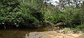 Boyd Beach - panoramio.jpg