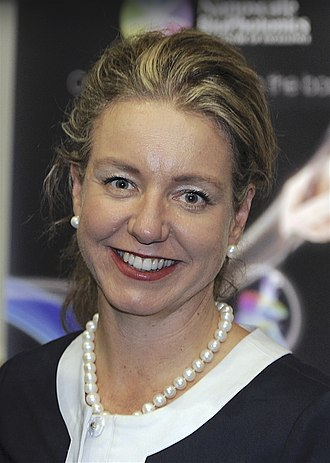 Minister for Infrastructure, Transport and Regional Development - Image: Bridget Mc Kenzie 2014 01