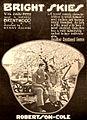 Bright Skies (1920) - Ad.jpg
