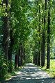 Brueckl Eppersdorf Allee Gutsbetrieb 01082007 03.jpg