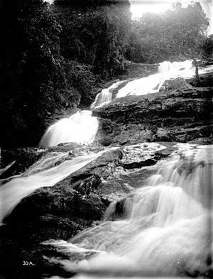 Amani Nature Reserve - Waterfalls at Amani (1906)