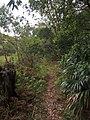 Burgh Track - panoramio (7).jpg