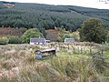 Burnfoot Cottage - geograph.org.uk - 1547154.jpg