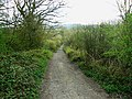 Byway to Ravensroost Wood - geograph.org.uk - 1237302.jpg