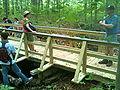 CFPAMenunkatuckTrail20100605EagleProjBridge3.jpg