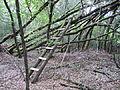 Cabane au Bois du Portail.JPG