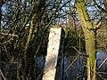 Cambridgeshire to the left - geograph.org.uk - 331363.jpg