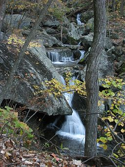 Campbell Gorge Three Ridges Wilderness.jpg