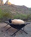 Camping under the stars at Kofa National Wildlife Refuge, AZ (6449997135).jpg