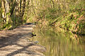 Cann Quarry Canal.jpg