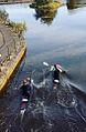 Canoe polo players.jpg