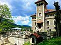 Cantacuzino Castle - panoramio.jpg