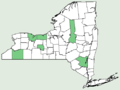Carex hyalinolepis NY-dist-map.png