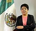 Carolina Zaragoza Flores (45585318472).jpg