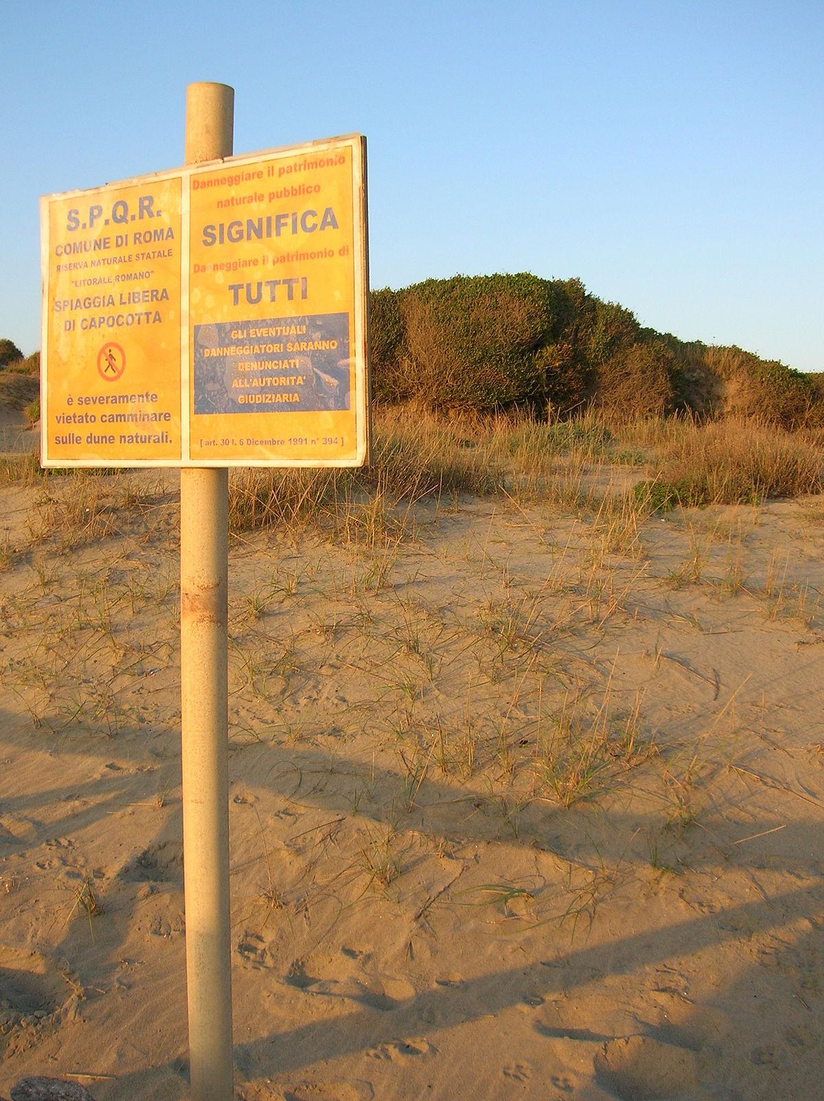 Matrimonio Litorale Romano : Riserva naturale statale litorale romano wikipedia