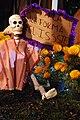 Cartonería de Día de Muertos III.jpg