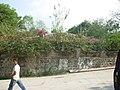 Casa de El Jocote, San Matias - panoramio.jpg